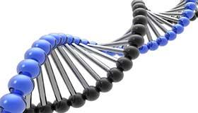 دانلود پایان نامه روشی جدبدبرای  الگوریتم زمانبندی Cpu با گردش به نوبت ژنتیکی | تک پی دی